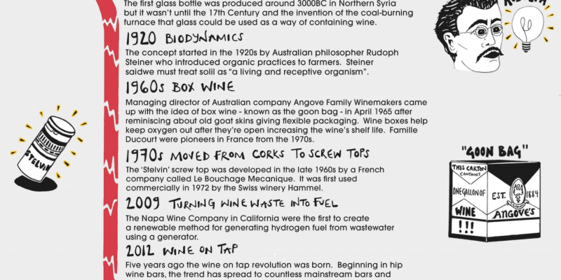 History of Wine Infographic