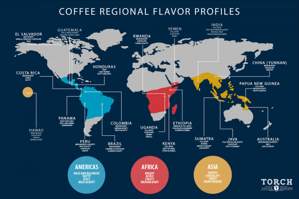 coffee bean map of the world
